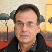 Paul Aucamp (Lead Consultant: Strategic Governance)